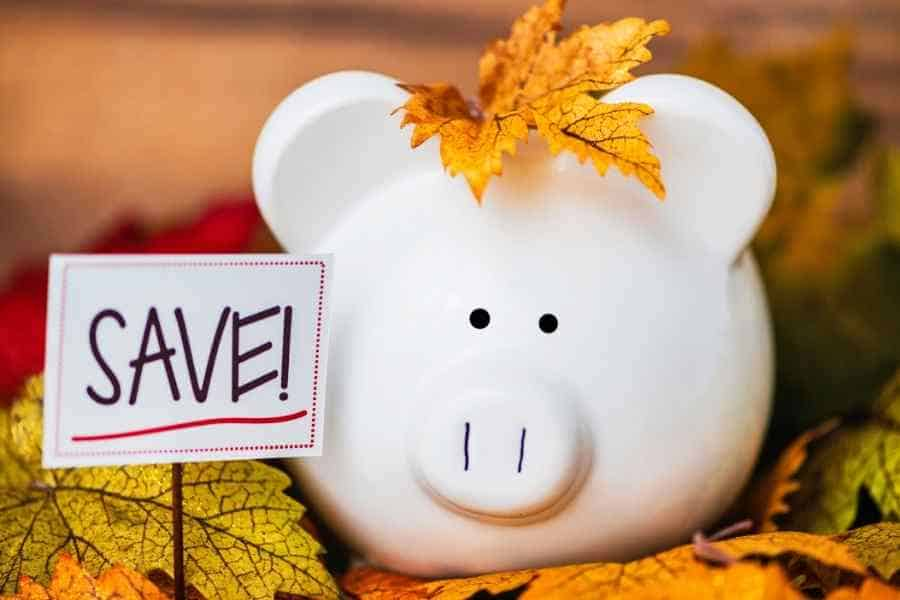 piggy bank in fall leaves