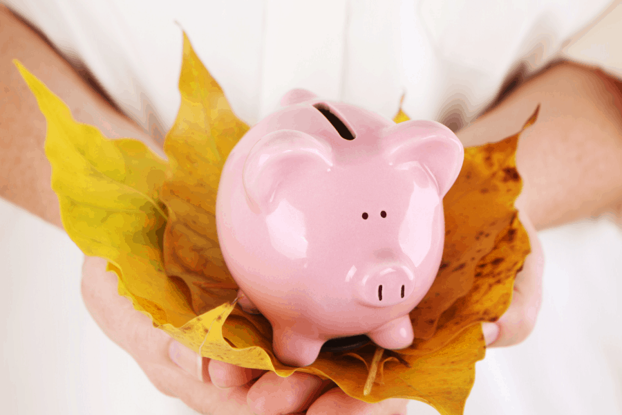 piggy bank with autumn leaves
