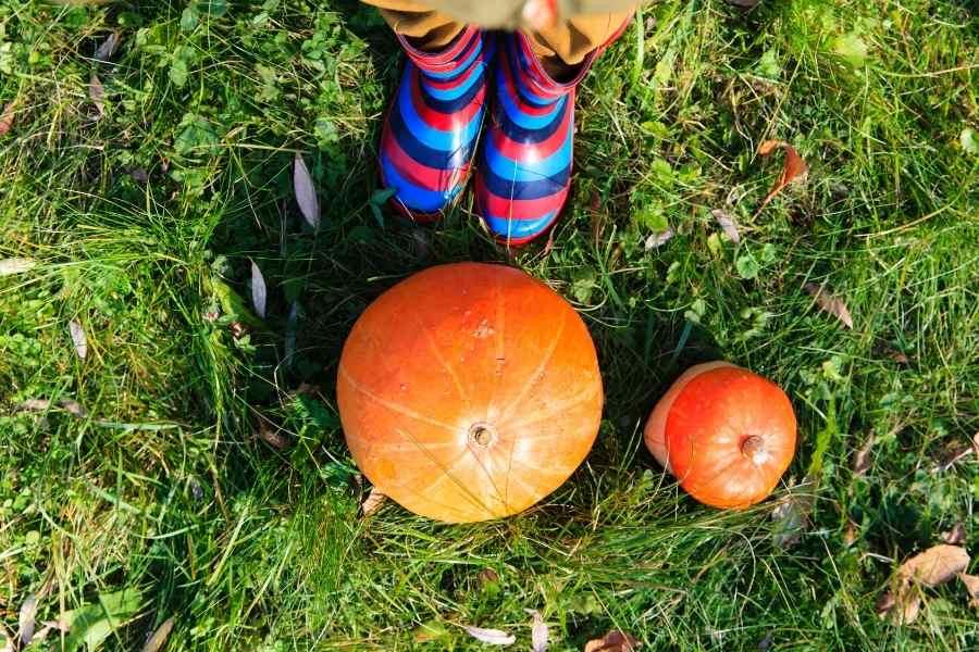woman standing in a pumpkin patch
